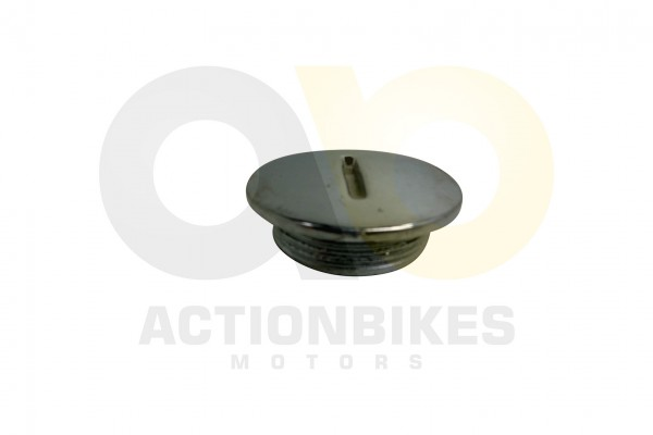 Actionbikes Mini-Quad-110-cc-O-Ring-fr-Lichtmaschinengehusedeckel-Mitte-Chrom27x20 333535303031352D3