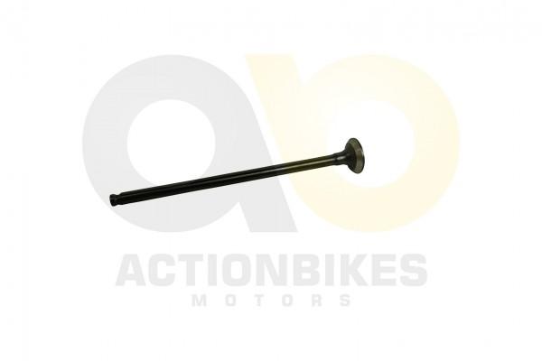 Actionbikes Motor-139QMA-A-Auslaventil 3130313430312D313339514D412D412D30303030 01 WZ 1620x1080