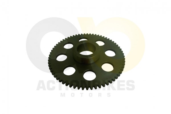 Actionbikes Shineray-XY300STE-Starterzahnrad-gro 32383136302D3132302D30303030 01 WZ 1620x1080