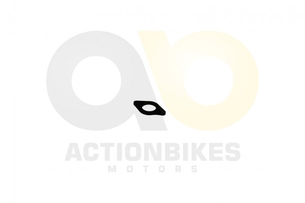 Actionbikes Feishen-Hunter-600cc-Dichtung-Ansaugrohr-Kunststoff 322E312E30312E30323430 01 WZ 1620x10