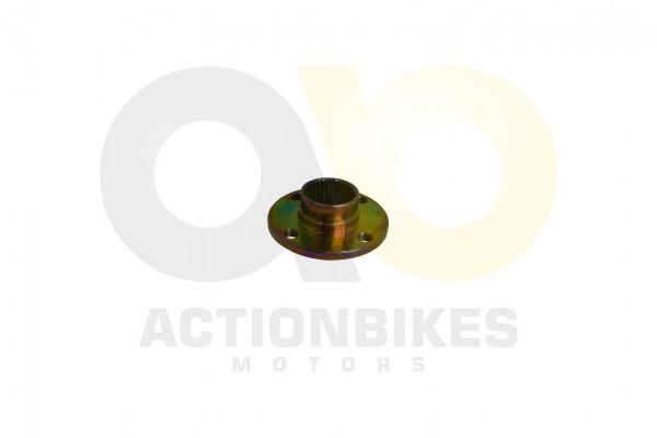 Actionbikes Shineray-XY250STXE-Aufnahme-fr-Kettenrad-XY200ST-9200ST-6A 33303134392D3336382D30303031