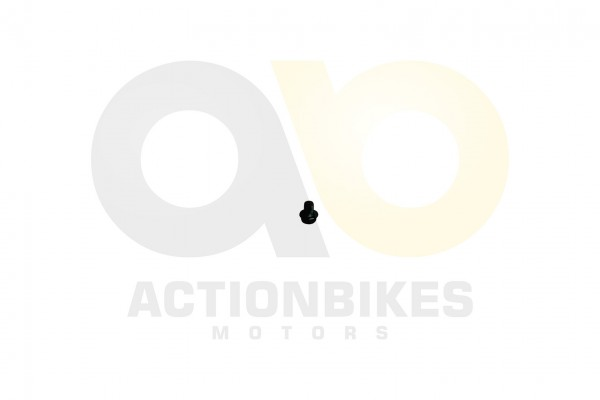 Actionbikes XYPower-XY500ATV-lablassschraube-M10x16 393131312D313030313631 01 WZ 1620x1080
