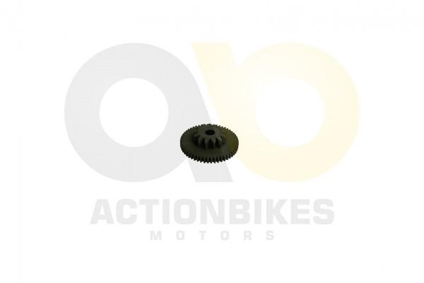 Actionbikes Shineray-XY250ST-9C-Anlasserdoppelzahnrad 4A4C3137322D303030393034 01 WZ 1620x1080