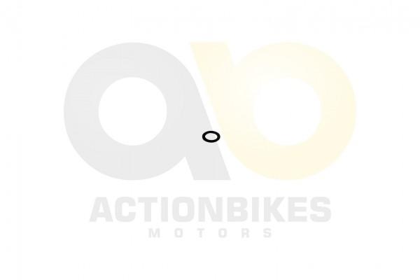 Actionbikes Motor-260cc-XY170MM-lablassschraube-Dichtring 30303032333139333031 01 WZ 1620x1080