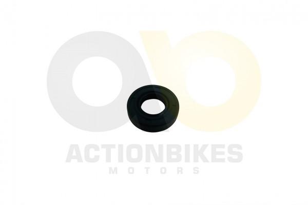 Actionbikes Shineray-XY250ST-9E--SRM--STIXE-Simmerring-fr-Schaltwelle--14x28x7 32343139302D3037302D3