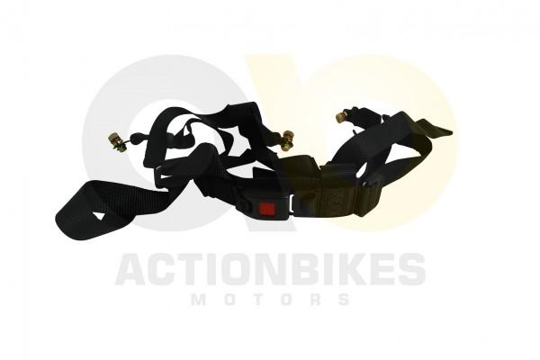 Actionbikes Luck-Buggy-LK260-Sicherheitsgurt-auch-fr-LK500250DS500DZ 37373232302D424343302D45303030