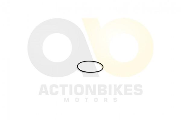 Actionbikes Feishen-Hunter-600cc-Dichtung-Steuerkettendeckel-O-Ring-95x33 382E332E30312E30303530 01