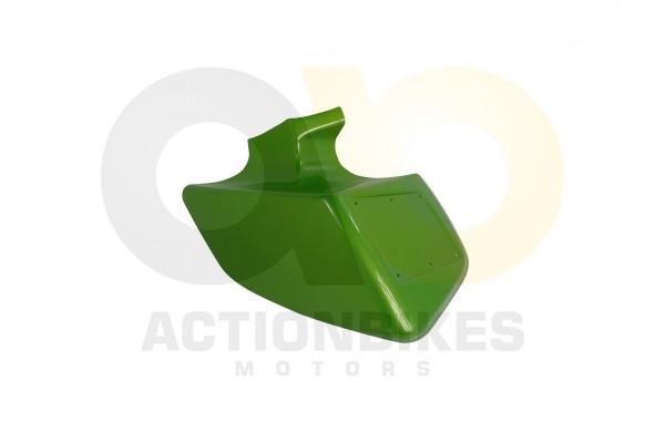 Actionbikes Shineray-XY250STXE-ab-0511-Kotflgel-vorne-links-grn-metallic-XY200ST-9 35333031323133372