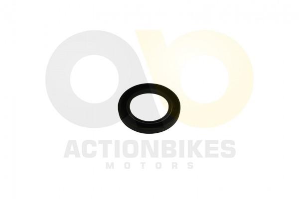 Actionbikes Simmerring-40628-XY250SRM-Achskrper-innen 313030302D34302F36322F38 01 WZ 1620x1080