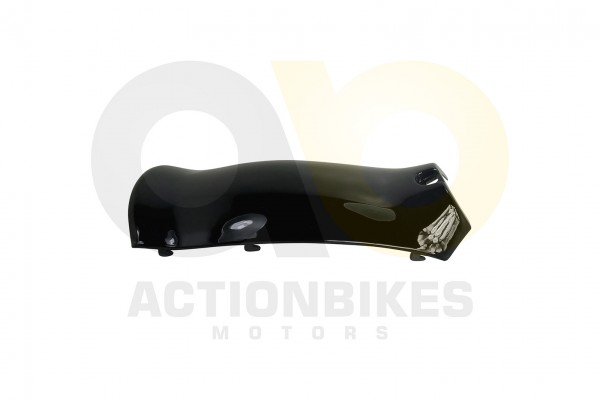 Actionbikes Znen-ZN50QT-HHS-Schutzblech-Einsatz-klein-schwarz 36313130312D444757322D393030302D34 01