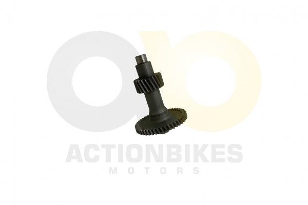Actionbikes Shineray-XY150STE--XY200ST-9-MIDDLE-AXES-ASSY 4759362D313530412D303031343131 01 WZ 1620x
