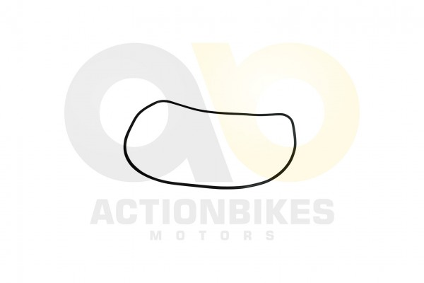 Actionbikes Shineray-XY150STE--XY200-ST-9--Dichtung-PLATEL-COVER 4759362D3132352D303031313032 01 WZ