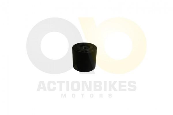 Actionbikes Shineray-XY250SRM-Achskrper-links-XY250ST-9C-komplett-mit-Kugellager-2-x-6007-Simmerring