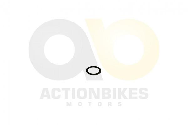 Actionbikes XYPower-XY500ATV-WASHER38512 393531312D333134353031 01 WZ 1620x1080