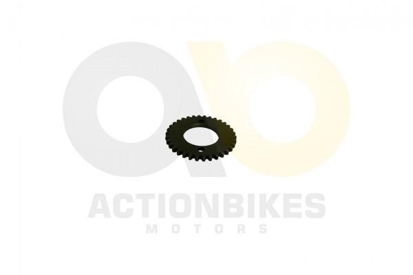 Actionbikes Speedslide-JLA-21B-Speedtrike-JLA-923-B-Steuerkettenzahnrad 313430353830303133 01 WZ 162