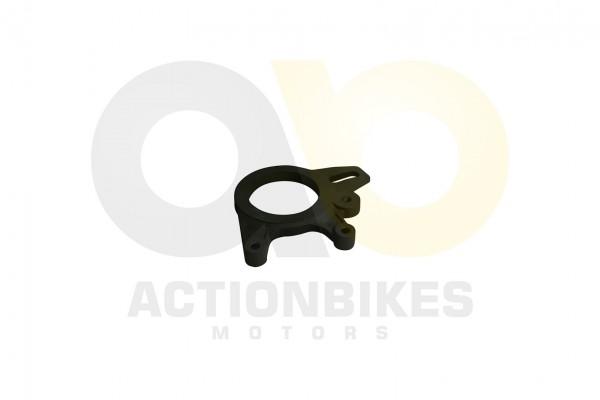 Actionbikes Egl-Mad-Max-250300-Montageplatte-Bremssattel-hinten 323830352D303730373031303041 01 WZ 1