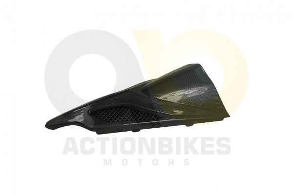 Actionbikes Jinling-Speedslide-JLA-21B-Speedtrike-JLA-923-B-Verkleidung-vorne-carbon-MitteNase 4A4C4