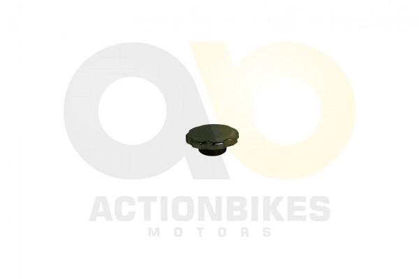 Actionbikes Lingying-200250-203E-Tankdeckel-Modell08 3630333031302D4C534E313030 01 WZ 1620x1080
