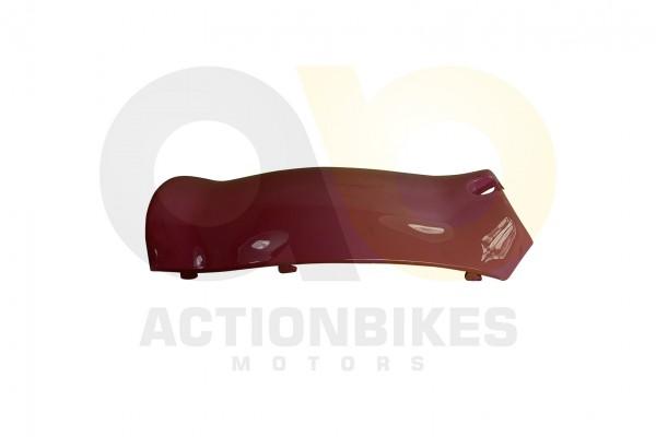 Actionbikes Znen-ZN50QT-HHS-Schutzblech-Einsatz-klein-pink 36313130312D444757322D393030302D31 01 WZ