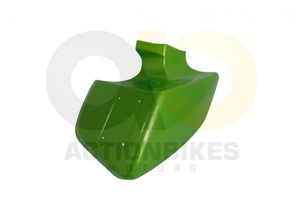 Actionbikes Shineray-XY250STXE-ab-0511-Kotflgel-vorne-rechts-grn-metallic-XY200ST-9 3533303132313338