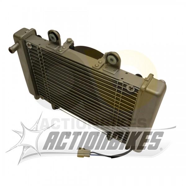 Actionbikes Shineray-XY250ST-9E--SRM--STIXE-Khler-OHNE-Lfter-ab-Modell-0908-XY250ST-5 31373034303030
