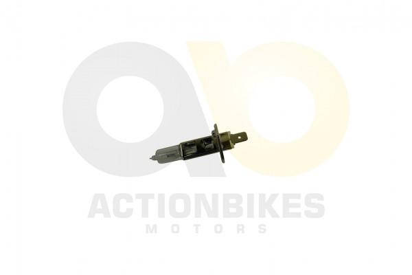 Actionbikes Glhlampe-Halogen-H1-12V35W 474C303030303034 01 WZ 1620x1080