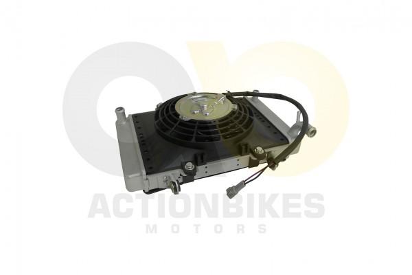 Actionbikes Shineray-XY250ST-9C-Khler 3137303430303139 01 WZ 1620x1080