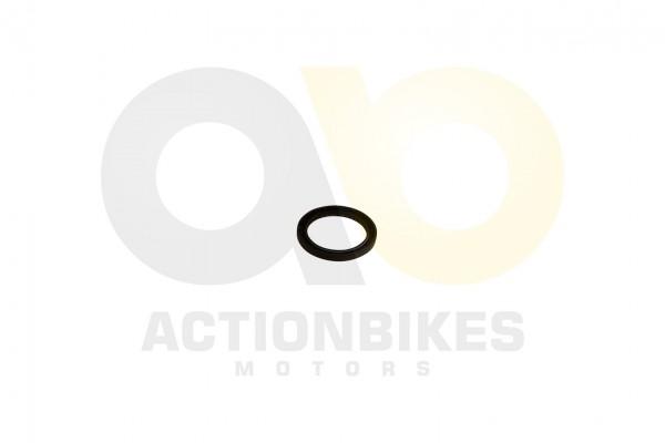 Actionbikes GoKa-GK1100-2E-Simmerring-Kurbelwelle-60808 4C4A343632512D312D3130303230323244 01 WZ 162