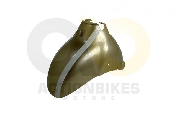 Actionbikes Znen-ZN50QT-HHS-Schutzblech-vorne-champagne 36313130302D444757322D393030302D33 01 WZ 162
