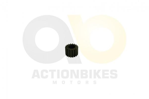 Actionbikes Speedslide-JLA-21B-Speedtrike-JLA-923-B-Primres-lpumpenzahnrad 313930303330303031 01 WZ