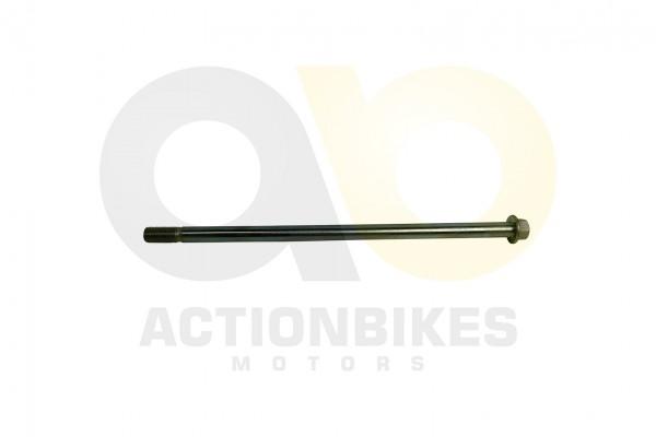 Actionbikes Shineray-XY250STXE-Schwingarmschraube-270x12 36313231342D3331302D30303030 01 WZ 1620x108