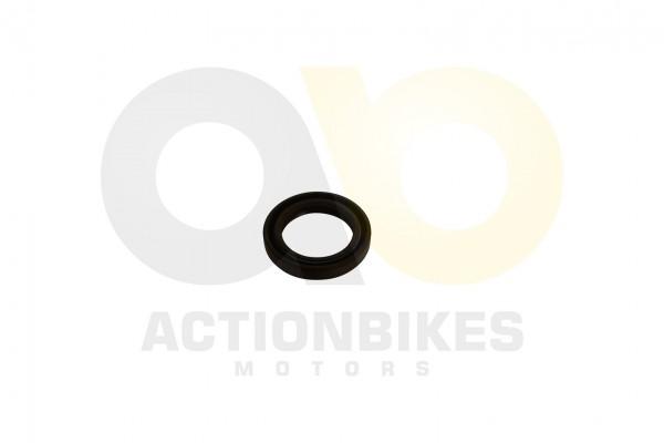 Actionbikes Simmerring-28407-Lichtmaschinengehuse-Bashan-300S-18 313030302D32382F34302F37 01 WZ 1620