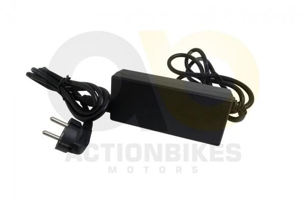 Actionbikes Freego-Deluxe-F2-Gelnde-Balance-Scooter-Ladegert-36V-16Arechteckiger-dreipoliger-Stecker