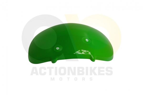 Actionbikes Shineray-XY350ST-2E-Kotflgel-hinten-grn 35333137303431362D30 01 WZ 1620x1080