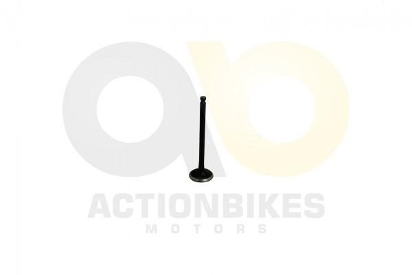 Actionbikes LJ276M-650-cc-Einlaventil 323730512D303130303541 01 WZ 1620x1080