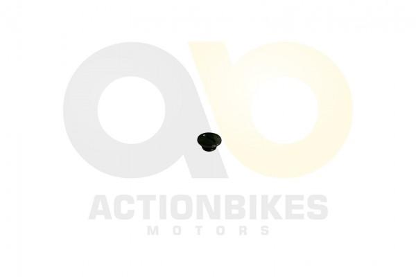 Actionbikes Shineray-XY250SRM-kleiner-Deckel-Lichtmaschinengehuse-OT-Markierung 31313431322D3035322D