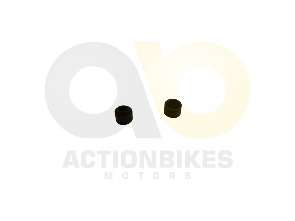 Actionbikes Motor-139QMA-Ventilschaftdichtung-Satz-2-Stck 474231333837312D355831302E3558382E33 01 WZ