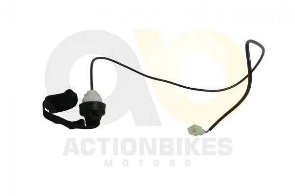 Actionbikes Mini-Quad-110-cc-Abreileine-mit-Schalter-hinten 333535303031362D32 01 WZ 1620x1080
