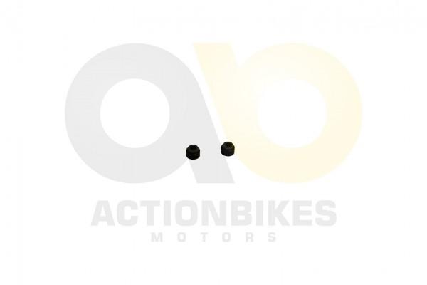 Actionbikes Shineray-XY350ST-EST-2E-Ventilschaftdichtung-2Stk 31353732422D504530332D30303030 01 WZ 1