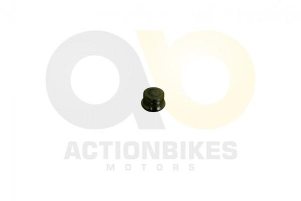 Actionbikes Shineray-XY250GY-2-Tachomagnet 33373031303238322D31 01 WZ 1620x1080