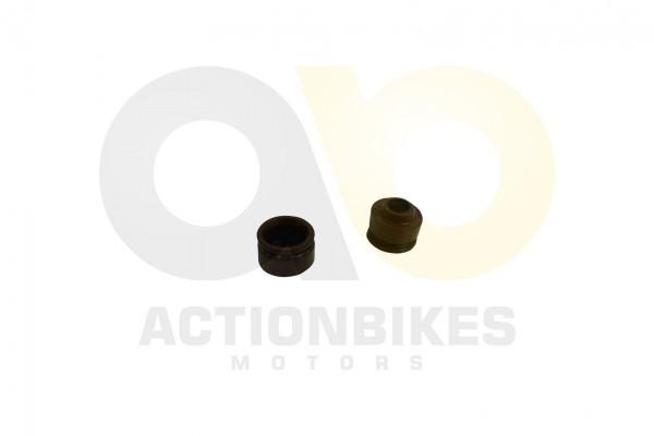 Actionbikes Motor-JJ152QMI-JJ125-Ventilschaftdichtung 31323230392D475935372D30303030 01 WZ 1620x1080