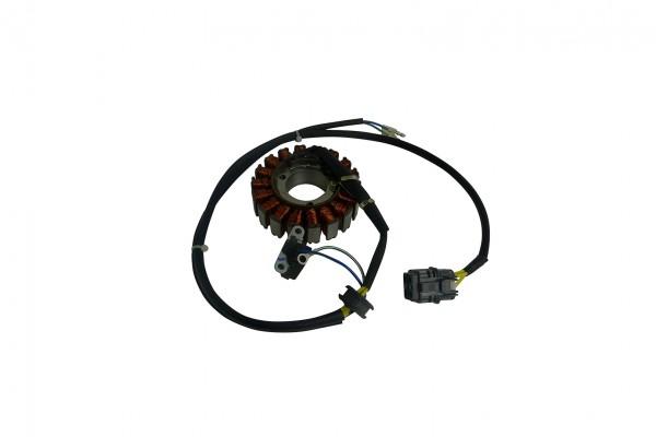 Actionbikes Access--Triton-300-SP250--Lichtmaschine 33313132302D4531302D303030 01 OL 1620x1080