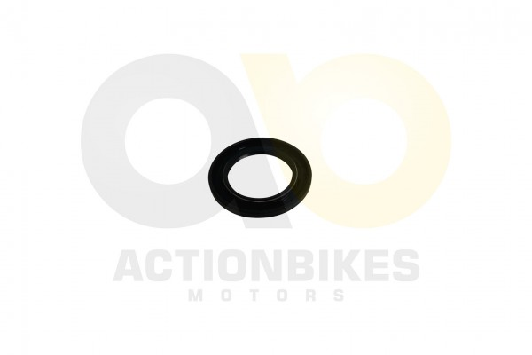 Actionbikes Simmerring-34525-Variomatikausgang-Motor-250cc-172MM 39313230312D534343302D30303030 01 W