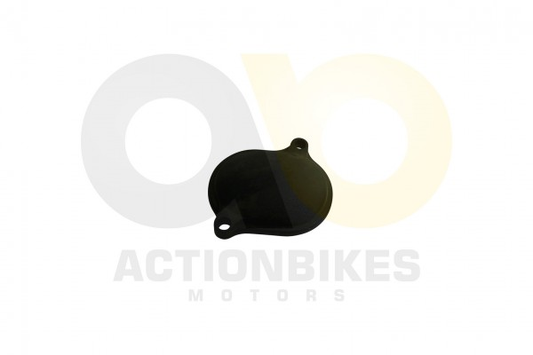 Actionbikes Shineray-XY350ST-E--ST-2E-Ventildeckel-Einlassventil 31313233302D504530332D30303030 01 W