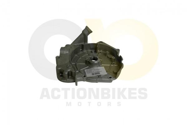 Actionbikes Shineray-XY150STE--XY200ST-9-Lichtmaschinengehuse 4759362D3132352D303030363031 01 WZ 162
