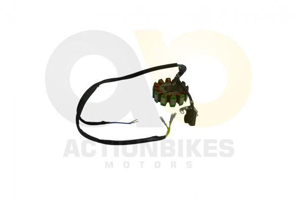 Actionbikes Shineray-XY250SRM-Lichtmaschine 33313231302D3037302D30303030 01 WZ 1620x1080