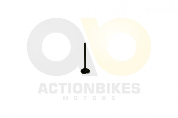 Actionbikes Shineray-XY200STII-Auslaventil 31343732302D3130302D30303030 01 WZ 1620x1080