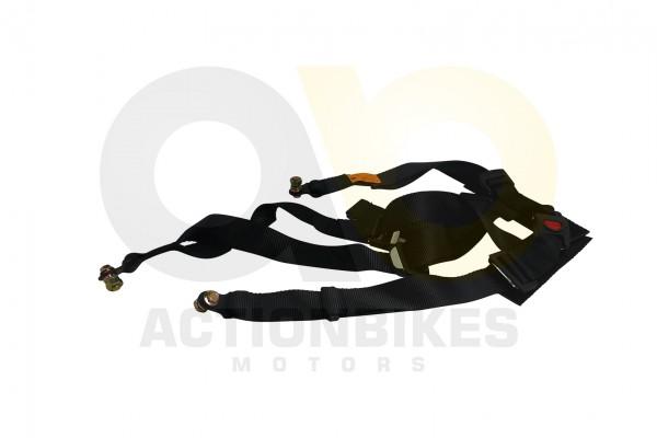 Actionbikes Tension-500-Sicherheitsgurt-schwarz 38353930302D35303430 01 WZ 1620x1080