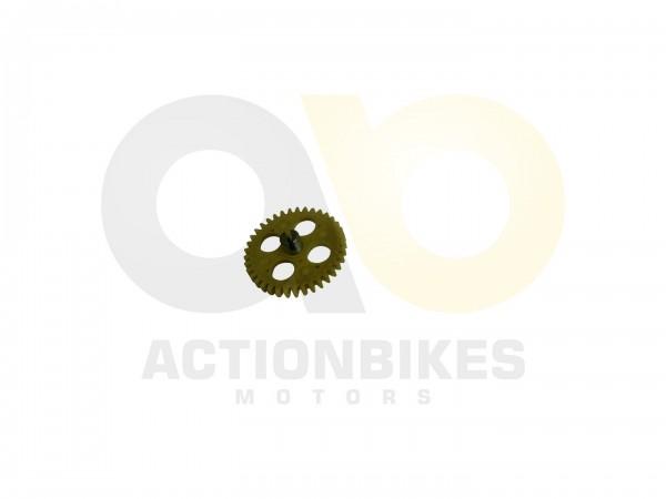Actionbikes Shineray-XY250ST-9E--SRM--STIXE-lpumpenzahnrad-Kunststoff 31353130302D3131332D303030302D