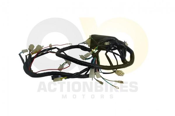 Actionbikes Kabelbaum-Egl-Mad-Max-250--abgerundete-CDI-Anschlsse 393931313037312D33 01 WZ 1620x1080